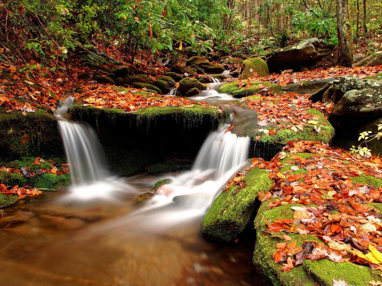 L automne page 4 - Date de l automne ...
